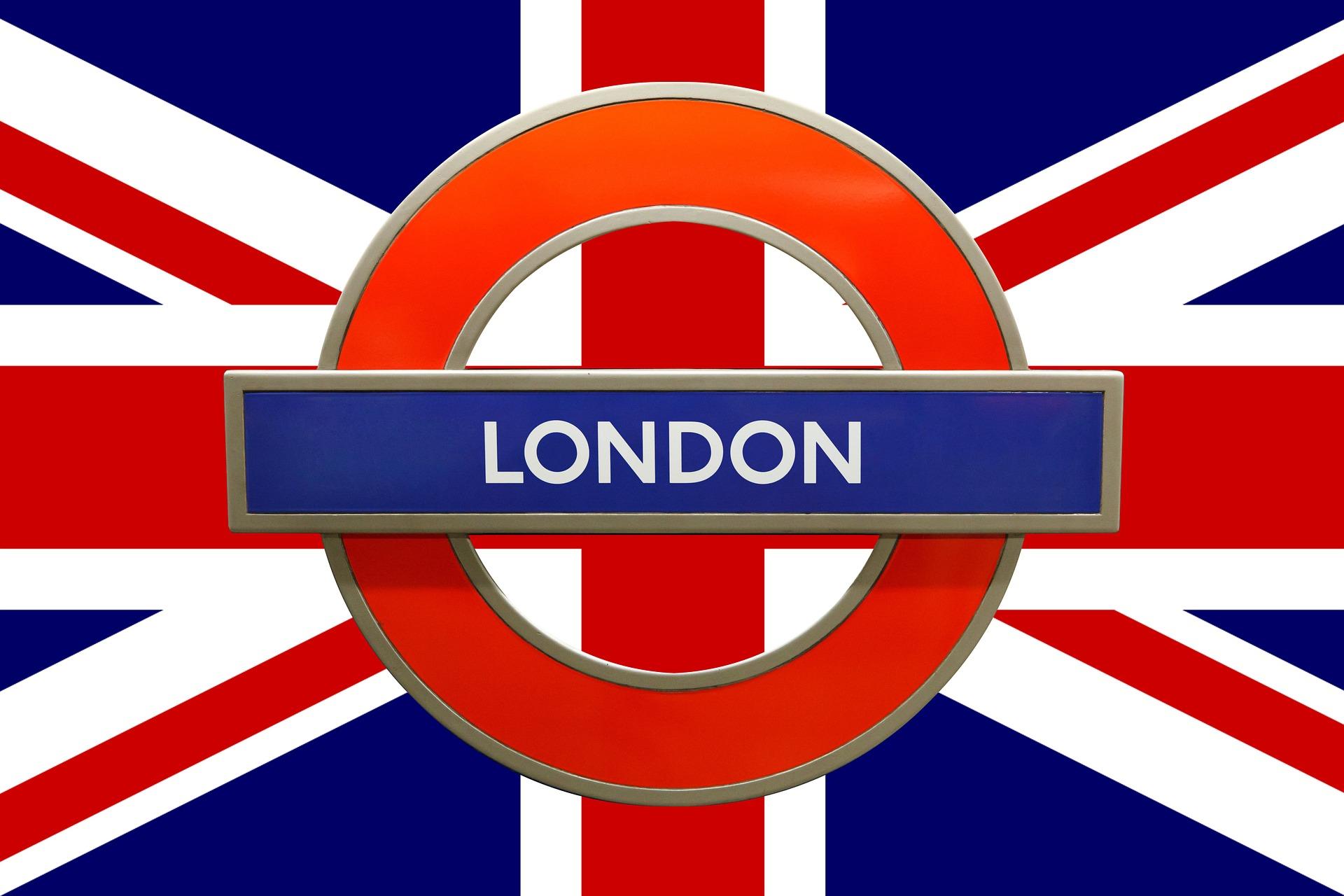 dzikie zwierzęta w londynie, jakie można tam spotkać, lis, wiewiórka szara, papuga, aleksandretta obrożna, zielone papugi w mieście, lisy, wiewiórki szare, jelenie szlachetne, jeleń szlachetny, daniele zwyczajne, daniel zwyczajny, jelonek rogacz