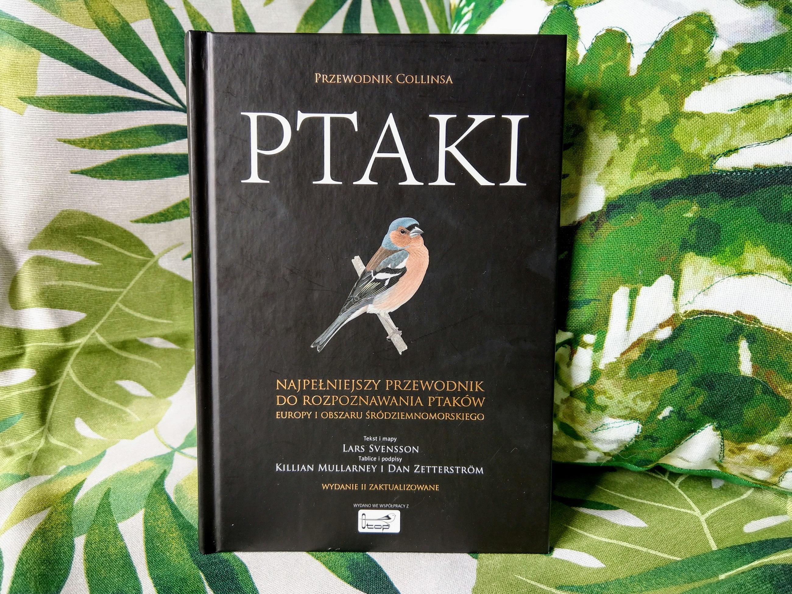 Ptaki Collinsa, przewodnik po ptakach, album, encyklopedia, najlepsza książka, obserwowanie ptaków, birdwatching, recenzja, blog o dzikich zwierzętach, animalistka.pl