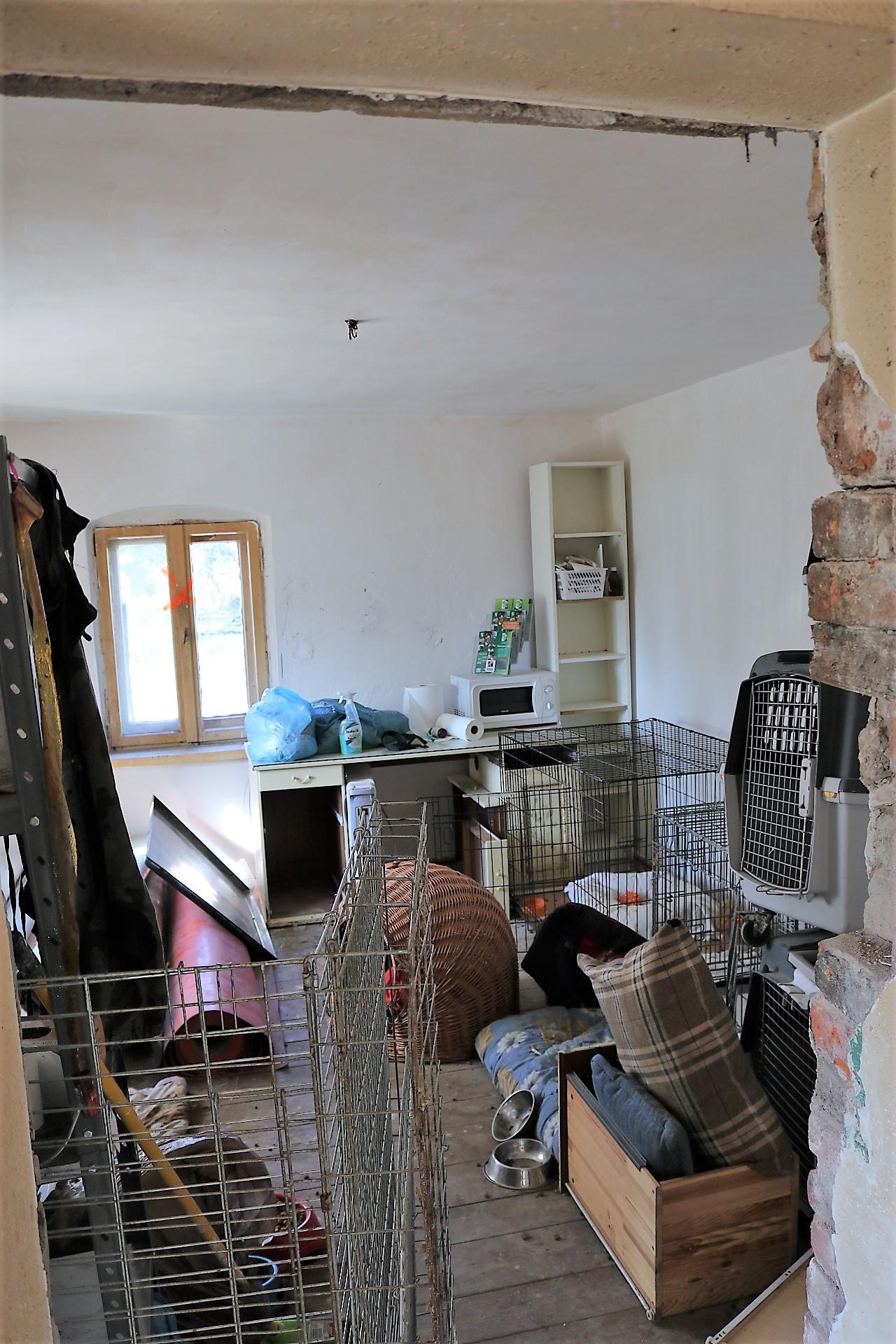 ekostraż, zrzutka, jak pomóc zwierzętom, stowarzyszenie na rzecz pomocy zwierzętom, blog o dzikich zwierzętach, animalistka.pl