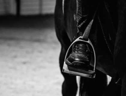 jazda konna, prezentmarzen, konkurs, lekcje jazdy konnej, marszowickie, blog o dzikich zwierzętach animalistka.pl
