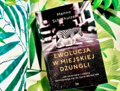 Ewolucja w miejskiej dżungli, Menno Schilthuizen, recenzja, ptaki w mieście, dzikie zwierzęta w mieście, blog o dzikich zwierzętach, blog o przyrodzie, animalistka.pl, animalistka