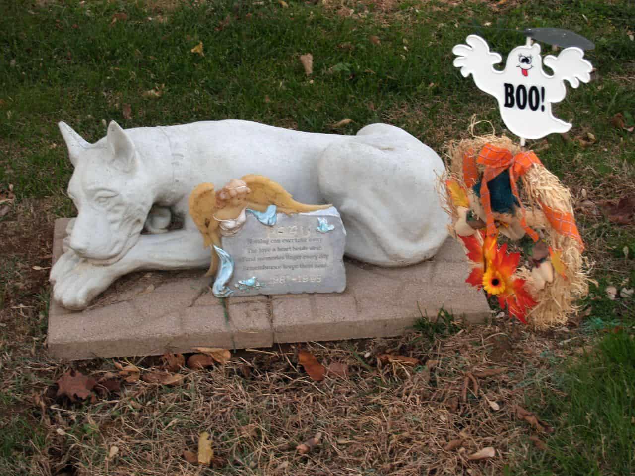 cmentarz dla zwierząt, co zrobić z ciałem psa, kota, grzebowisko, gdzie pochować zwierzę, pogrzeb, urna dla psa, esthima, krematorium dla zwierząt, blog o dzikich zwierzętach, blog o przyrodzie, przyrodniczy, animalistka, animalistka.pl
