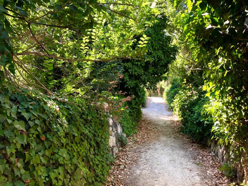 buskett gardens, ogrody buskett, malta, co zwiedzać na malcie, przyroda, piękne miejsca, wakacje, blog o zwierzętach, blog o przyrodzie, animalistka, animalistka.pl
